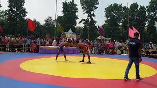bhidant