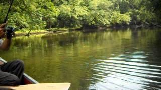 "Brandon Crusan Outdoors ""Tuscarawas river fishing"""
