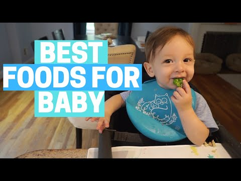 BABY LED WEANING - MEAL IDEAS AND FAVORITE FOODS! Organic, Healthy, Easy!
