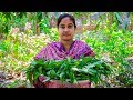 Vegetable Recipe: Water Spinach Fried Recipe in Village | Village Food Factory