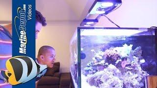 EcoTech Marine Wireless VorTech Control via iPhone