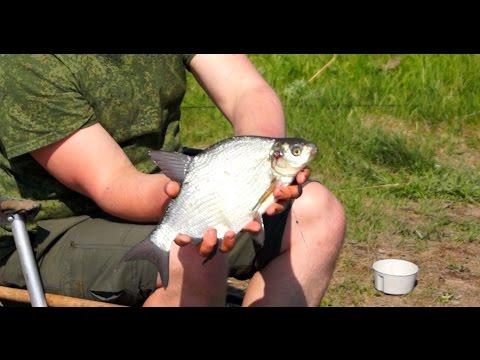 летняя рыбалка на фидер - 2016-07-09 17:10:34