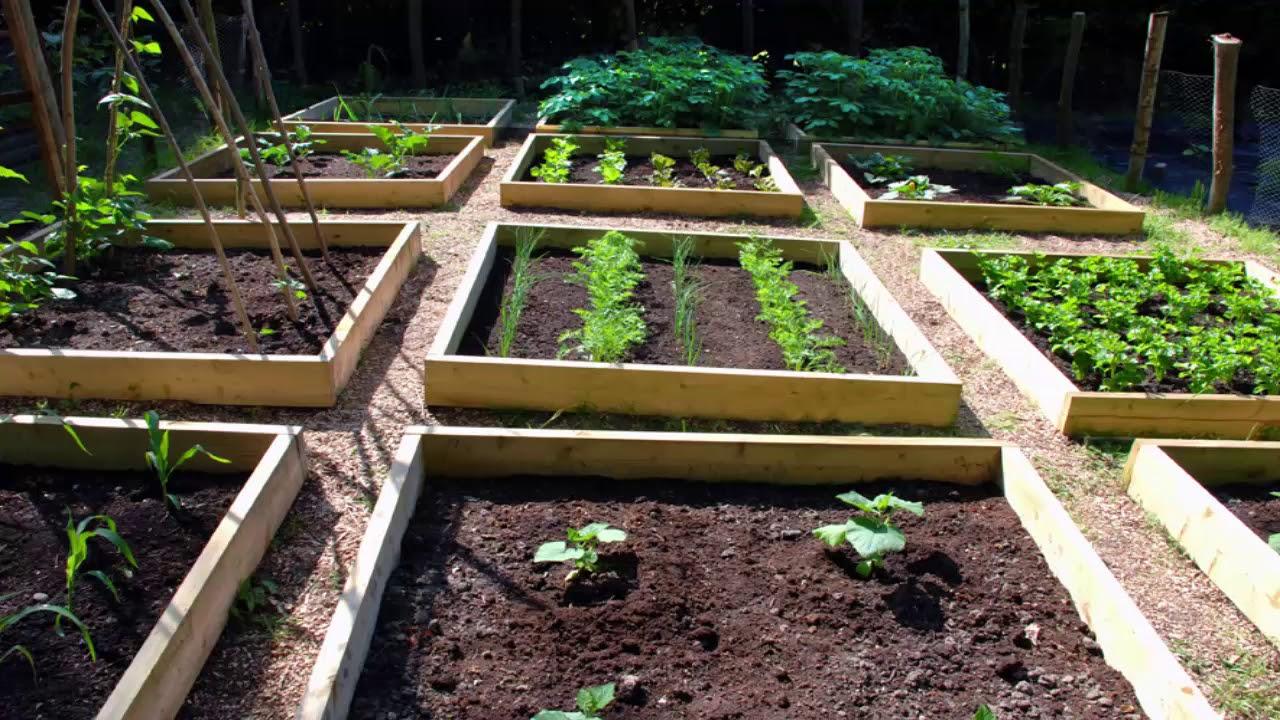 Vegetable Garden Design Ideas - YouTube