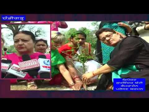 DeshVideshTv - Tree Plantaion By Social Organisation | Chandigarh News