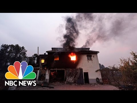 Deadly Wildfires Kill 41 In Spain And Portugal | NBC News