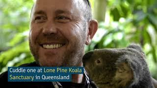 Top 5 Cutest Animals  Nature & Wildlife   Tourism Australia