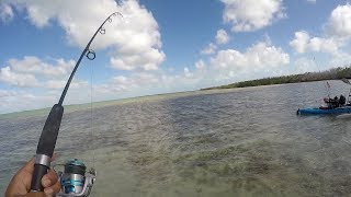 Windy Day Stress Fishing Ft.  Super Shrimps Chum Pellets