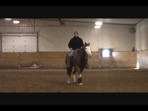Western Pleasure Training with Jamie Novak (part 1)