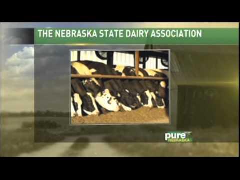 Learn more about Nebraska dairy farming