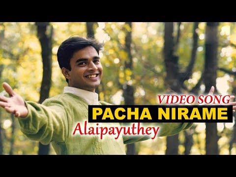 Pacha Nirame Video Song | Alaipayuthey Malayalam | Madhavan | Shalini | A R Rahman | Mani Ratnam