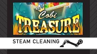 Steam Cleaning - Cobi Treasure Deluxe