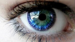 Improve Your Vision Naturally Bonus: Eye Exercises To Improve Vision