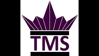 TMS Podcast - Robey Wan Sessions #1