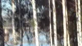 Грузоперевозки по России. СИРИУС.(http://sirius-perevozki.ru/ Грузоперевозки по России грузовиками транспортной компании Сириус. На видео - грузовик..., 2009-11-03T10:23:30.000Z)