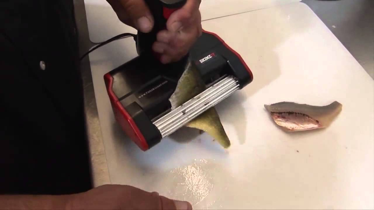 fish skinzit cleaner electric