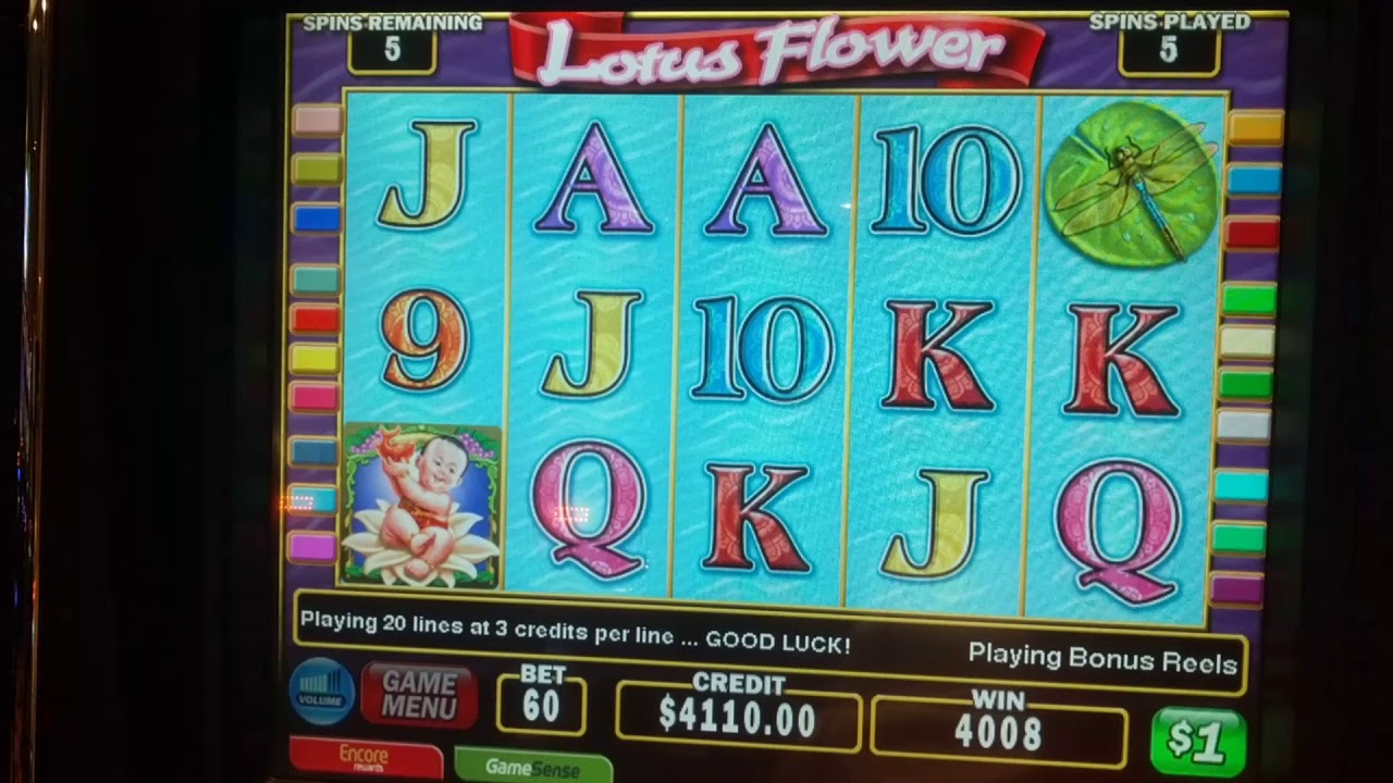 Lotus flower slot 60 bet jackpot youtube lotus flower slot 60 bet jackpot izmirmasajfo