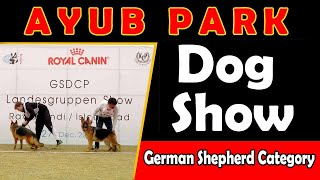 Dog Show at Ayub Park (German Shepherd Category)