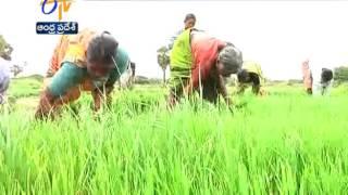 AP Govt Introduces A New Scheme 'NTR Jalasiri-2'