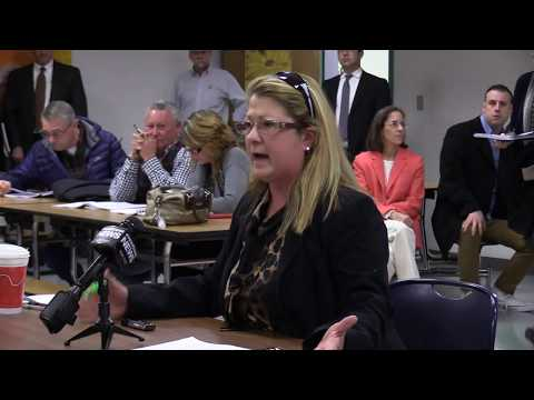 Sen. Elaine Morgan Speaks At RIDOT Environmental Assessment Meeting