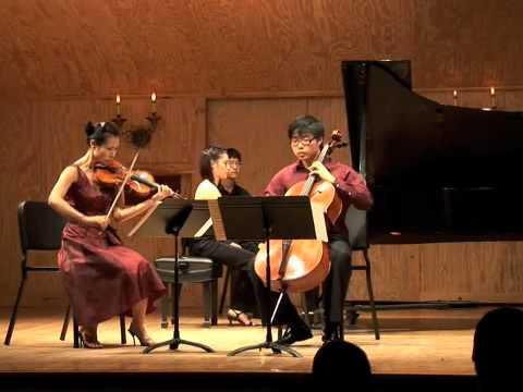 Brahms, Piano Trio No. 3 in C Minor Op 101 Allegro Energico