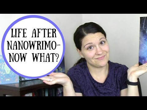 Life After NaNoWriMo! Now What?
