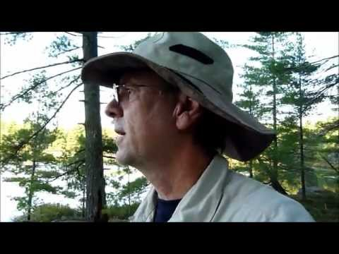 Off-trail Backpacking & Making A Bush Camp On Crown Land