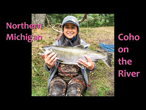 Coho On The River-Northern Michigan