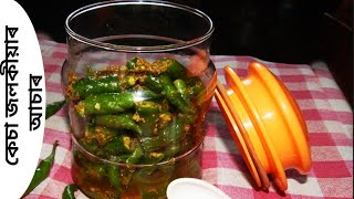 mirchi ka achar in hindi
