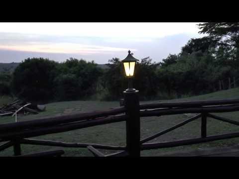 Evening at Paraa Safari Lodge, Murchison Falls, Uganda