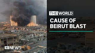 Beirut Blast: Experts analyse cause and effects | The World
