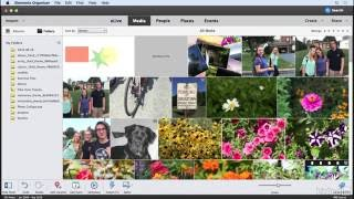 Adding graphics to an image | Learning Photoshop Elements 15 | Lynda.com from LinkedIn