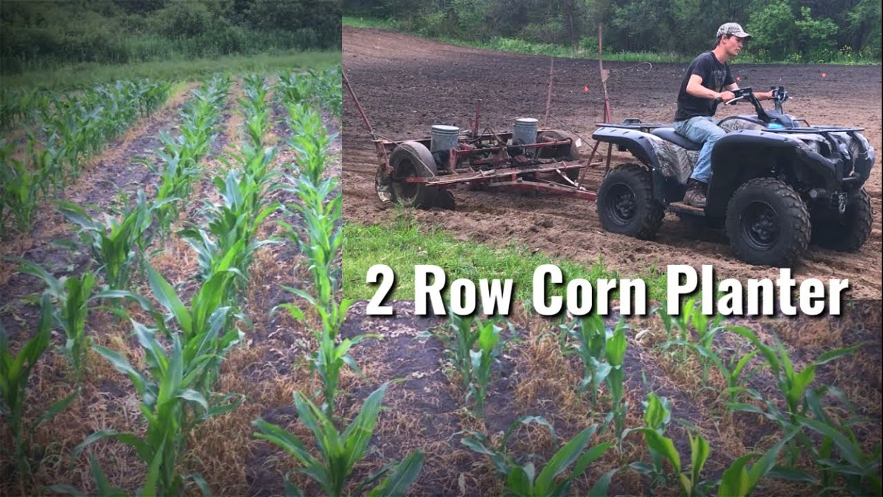 Corn and Soybean Destination Food Plot Planting with old 2 Row Planter
