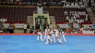 리틀 K타이거즈 A팀 : 2017 안양 세계태권도한마당 결선