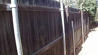 Wood Fence With Round Galvanized Steel Posts And Brackets