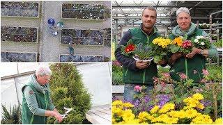 Experten-Tipps: So gelingt die Gartenarbeit im Frühjahr!