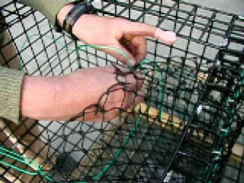 How to Build a Lobster Trap: 15 Rigging the Parlour - YouTube
