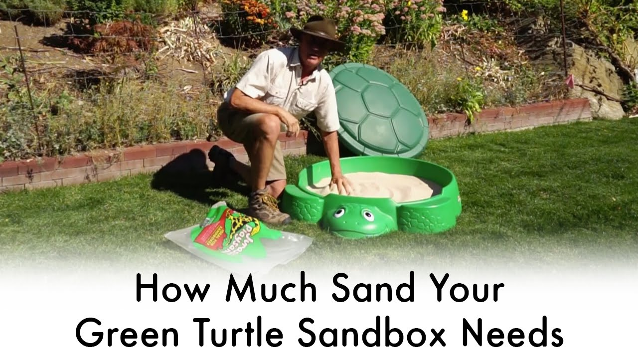how much sand for green turtle sandbox