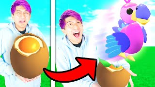 Can We Beat The FIRST TO HATCH A LEGENDARY WINS CHALLENGE In Roblox ADOPT ME!? (IMPOSSIBLE)
