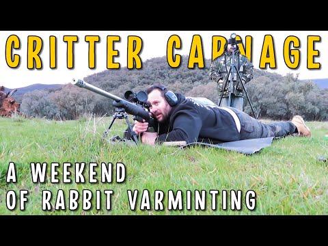 Aussie Rabbit Hunting With Centrefire Rifles | Tikka 243, Howa 223, CZ455 22LR