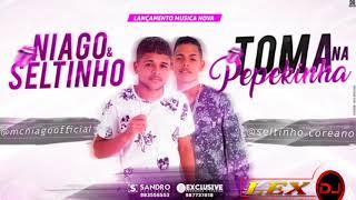 Niago Seltinho TOMA NA PEPEKINHA M SICA NOVA.mp3