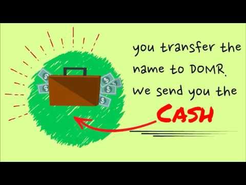 Domain loan