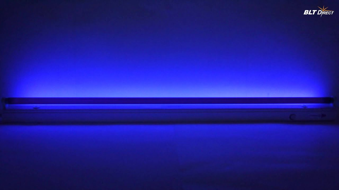 fluorescent blacklight blue tube youtube. Black Bedroom Furniture Sets. Home Design Ideas