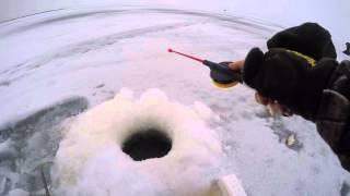 Зимняя рыбалка На р Волхов( Дуплет).