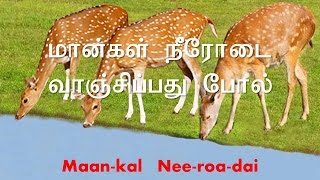 As the deer panteth for the water - Tamil