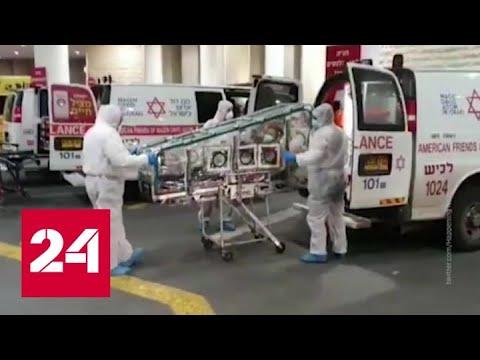 Коронавирус: есть ли основания для паники - Россия 24