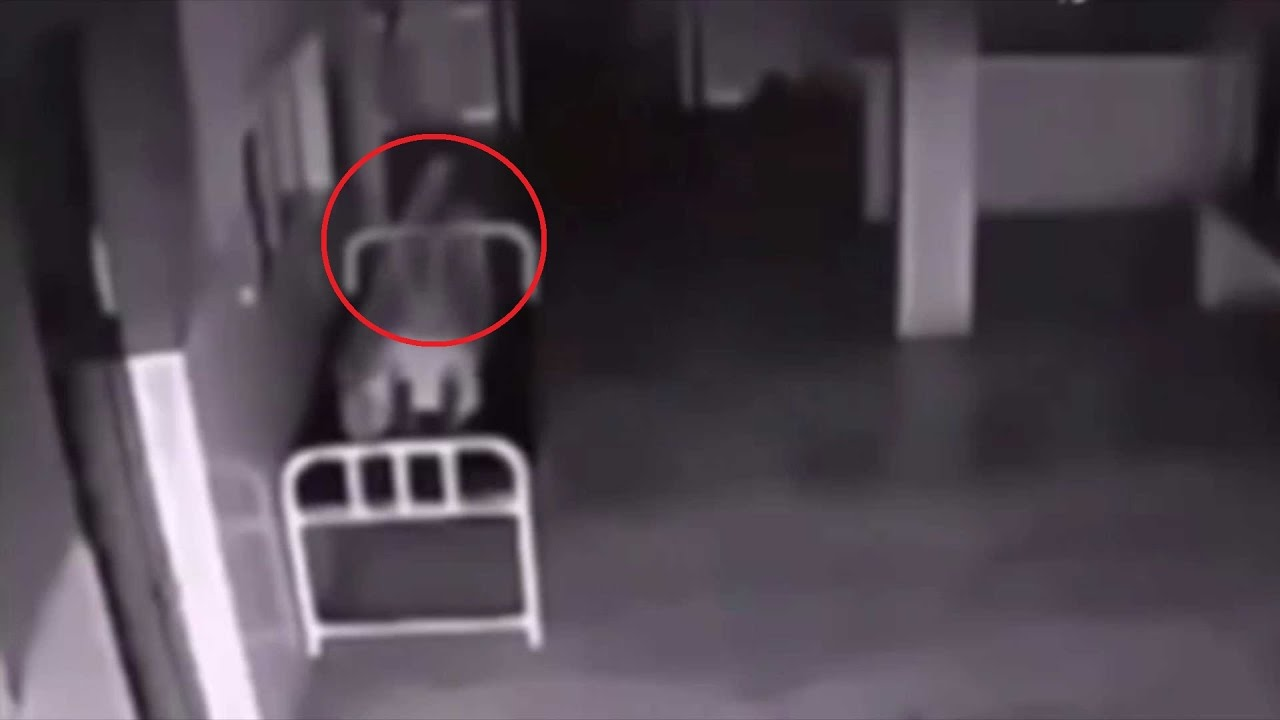 Мастурбирующие снятые на скрытую камеру #1
