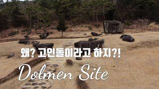 #196 [4K] 화순여행, 세계문화유산 고인돌 유적지…