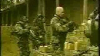 Comandos chilenos