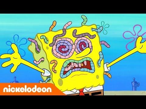 ???? Губка Боб Квадратные Штаны | Полные Эпизоды! | Nickelodeon Россия