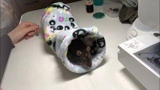 Tunnel Rat Hammock: TUTORIAL